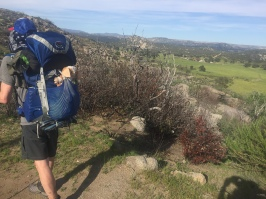 Giz loves a view